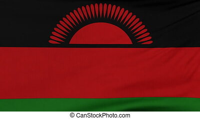 National flag of Malawi flying on the wind - National flag...