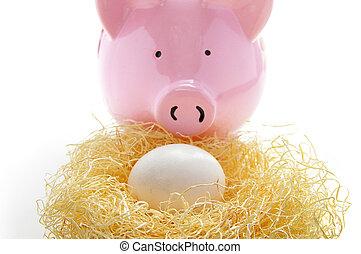piggy bank behind an egg in a nest (nest egg)