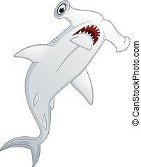 hammer-headed shark
