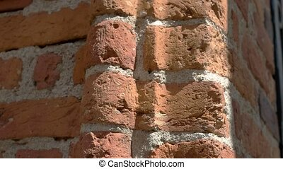 Old bricks of red color.