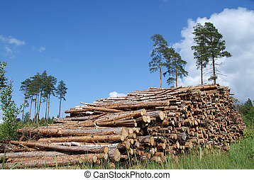 Pile of Timber Logs Summer Landscape - A pile of timber logs...