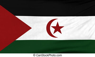 National flag of Western Sahara flying on the wind -...