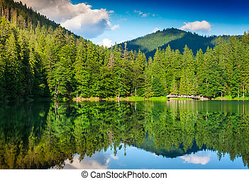 mountain lake - landscape with a lake and pine forest on the...