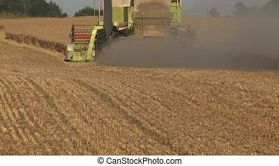 Dust rise from back of harvester combine harvesting mature...