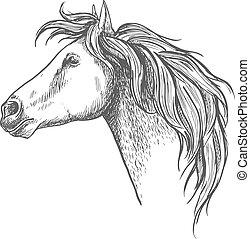 Racehorse head sketch for horse racing design - Racehorse...