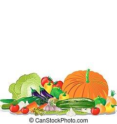 Vegetable harvest