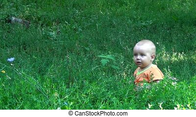 A little child on the grass in the park