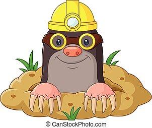 Cartoon funny mole wearing helmet a - Vector illustration of...