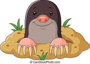 Cartoon funny mole