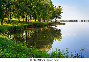 shore of the lake near the green deciduous forest in summer