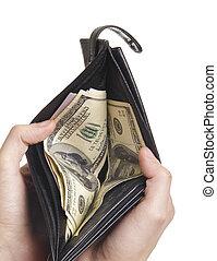 dollard in purse isolaetd