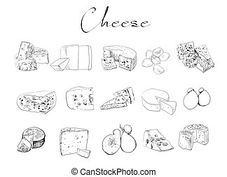 vector cheese sketch drawing designer template. farm food...