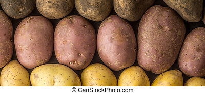 Raw potatoes mix background wide screen