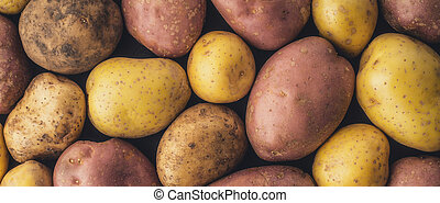 Raw potatoes  background wide screen