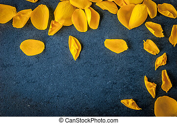Rose petals on the dark stone table