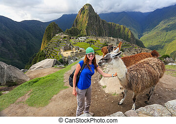 Young woman standing with friendly llamas at Machu Picchu...
