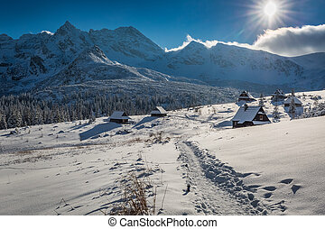 Snowy mountain hut in the mountains, Tatras, Poland