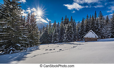 Small wooden cabin in winter in the mountains at sunrise,...
