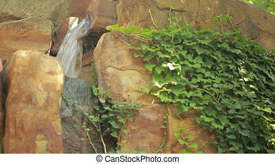 water pouring out of an old moss covered stone trough. ivy...