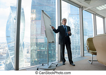 Mature business man making a presentation in modern office