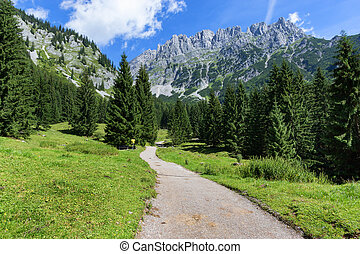 Hiking path through summer mountain landscape
