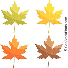 Set of color vector maple leaf on a white background. Autumn leaves isolated. Stock vector illustration.