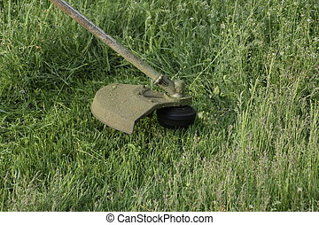Mowing green grass using a fishing line trimmer. Application...
