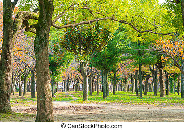 Green Forest trees - Green Forest trees