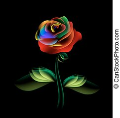 dark and fairy flower - black background and multi-colored...