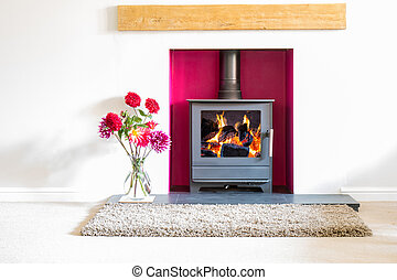 Wood Burning Stove with blazing log fire in a white room...