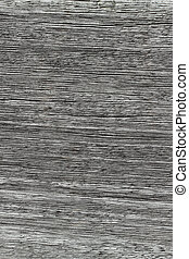 Gray wood texture lines close up natural abstract background.