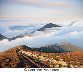Mountain landscape with road and beautiful fog - Mountain...