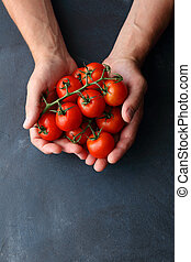 red tomatoes in man hands, food background