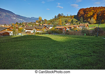 Green meadows near town of interlaken, canton of Bern,...
