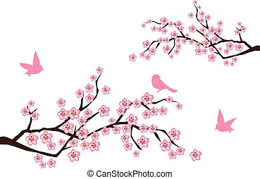 sacura branches - vector cherry blossom with birds