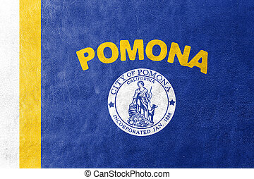 Flag of Pomona, California, USA, painted on leather texture
