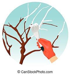 Whitewashing of trees in the spring in garden - Whitewashing...