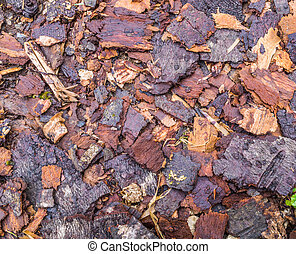 Wood chips for landscaping in the gardens
