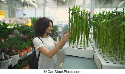 Pretty, young woman choosing in shop a plant for her...