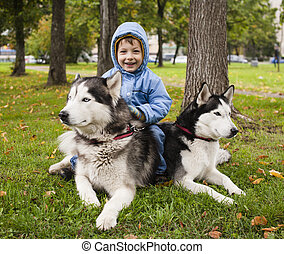 little cute boy with husky two dog in green park playing,...