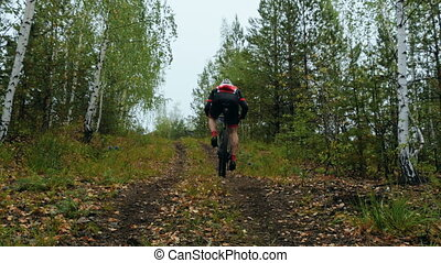 rider athlete riding a bike uphill along a forest trail....