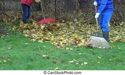 young couple in colorful clothes rake autumn leaves in...