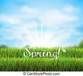 written word Spring