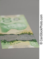 20 dollars Canadian bank notes on gray background