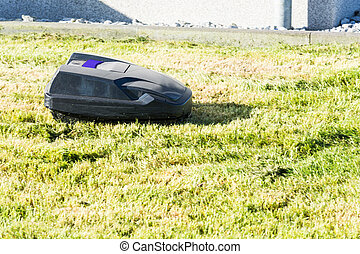 Automatic lawn mower mows the lawn - Lawnmower robot,...