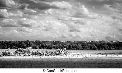 Country landscape black and white