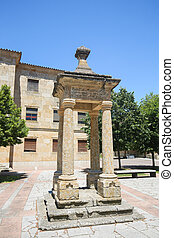 Ciudad Rodrigo - Monument at the Cathedral of Ciudad...