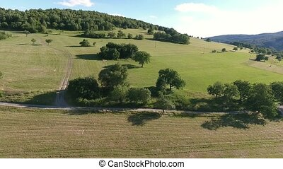 Aerial view of forest and green grassland, summer day -...