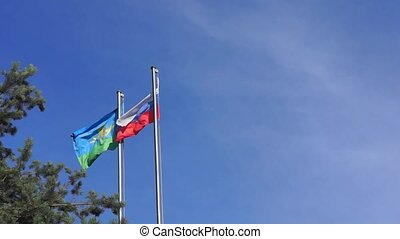 Flags of Russia and VDV on wind - Airborne flag and flag of...