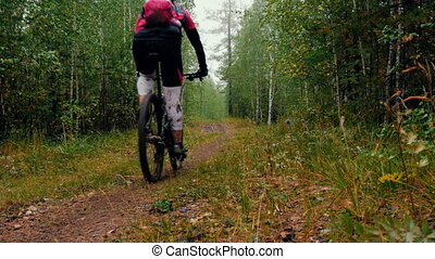 rider a cyclist riding along a forest trail during sports...